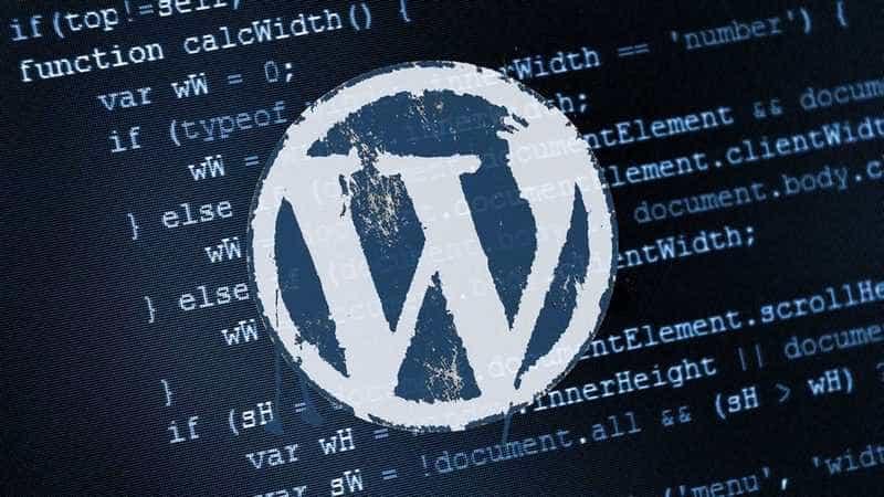 WordPress Yorumlarda Site adresi kısmını kaldırma
