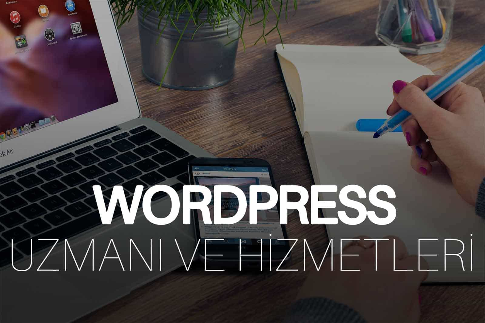 WordPress Uzmanı – WP Site Optimizasyonu